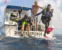 caribbean dive operator