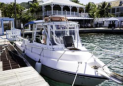 Christiansted USVI dive operator