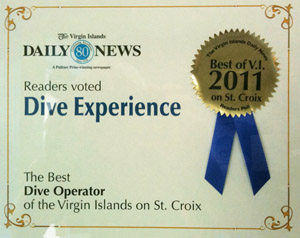 Best Dive Operation in St. Croix