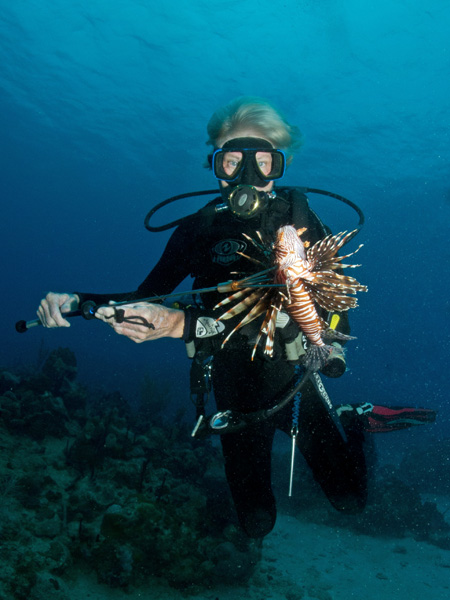 Lionfish Hunt Dive Experience