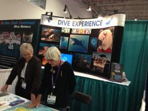 Dive Experience Booth at Beneath The Sea